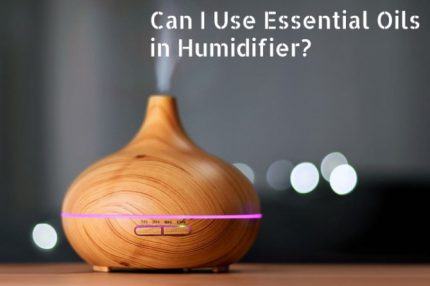 Essential Oils for Humidifier